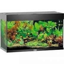 JUWEL Aquarium RIO 125 L