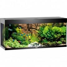 JUWEL Aquarium RIO 240 L NEGRO